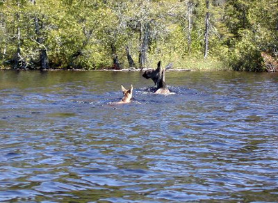 Art Latto's Wilderness Camps Curchill Lake Outpost