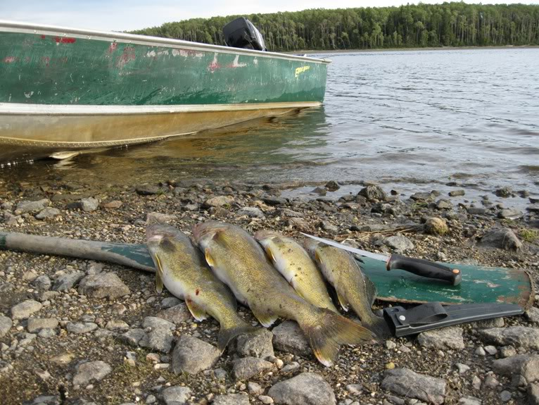 Eddie North's Attawapiskat River Adventures